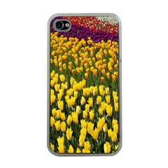 Colorful Tulips In Keukenhof Gardens Wallpaper Apple Iphone 4 Case (clear)