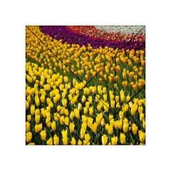 Colorful Tulips In Keukenhof Gardens Wallpaper Acrylic Tangram Puzzle (4  x 4 )