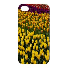 Colorful Tulips In Keukenhof Gardens Wallpaper Apple iPhone 4/4S Premium Hardshell Case