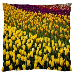 Colorful Tulips In Keukenhof Gardens Wallpaper Large Cushion Case (Two Sides)