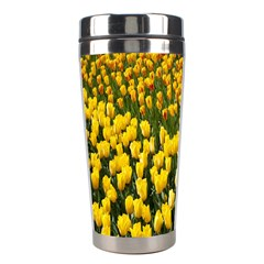 Colorful Tulips In Keukenhof Gardens Wallpaper Stainless Steel Travel Tumblers