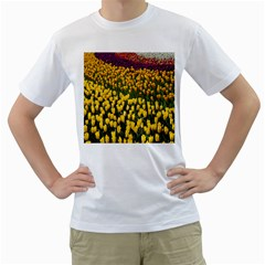 Colorful Tulips In Keukenhof Gardens Wallpaper Men s T-Shirt (White)