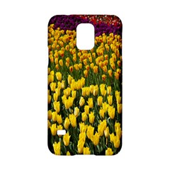 Colorful Tulips In Keukenhof Gardens Wallpaper Samsung Galaxy S5 Hardshell Case