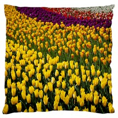 Colorful Tulips In Keukenhof Gardens Wallpaper Large Flano Cushion Case (one Side)