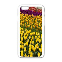 Colorful Tulips In Keukenhof Gardens Wallpaper Apple iPhone 6/6S White Enamel Case