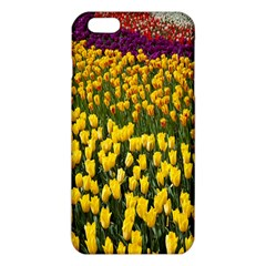Colorful Tulips In Keukenhof Gardens Wallpaper iPhone 6 Plus/6S Plus TPU Case