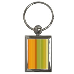 Colorful Citrus Colors Striped Background Wallpaper Key Chains (Rectangle)