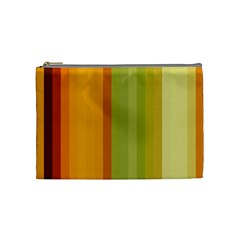 Colorful Citrus Colors Striped Background Wallpaper Cosmetic Bag (medium)