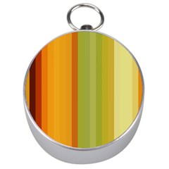 Colorful Citrus Colors Striped Background Wallpaper Silver Compasses