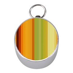 Colorful Citrus Colors Striped Background Wallpaper Mini Silver Compasses