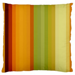 Colorful Citrus Colors Striped Background Wallpaper Large Flano Cushion Case (Two Sides)