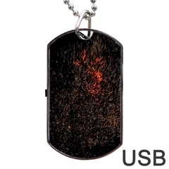 July 4th Fireworks Party Dog Tag USB Flash (One Side)