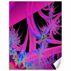 Fractal In Bright Pink And Blue Canvas 18  x 24