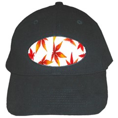 Colorful Autumn Leaves On White Background Black Cap