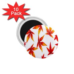 Colorful Autumn Leaves On White Background 1 75  Magnets (10 Pack)