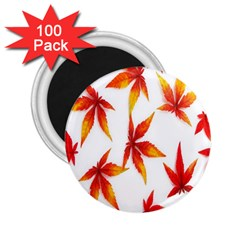 Colorful Autumn Leaves On White Background 2.25  Magnets (100 pack)