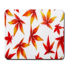 Colorful Autumn Leaves On White Background Large Mousepads