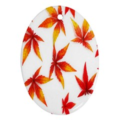 Colorful Autumn Leaves On White Background Oval Ornament (two Sides)