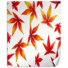 Colorful Autumn Leaves On White Background Canvas 16  X 20