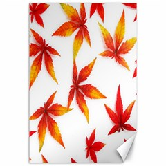 Colorful Autumn Leaves On White Background Canvas 24  X 36