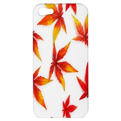 Colorful Autumn Leaves On White Background Apple iPhone 5 Hardshell Case