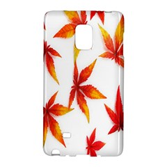 Colorful Autumn Leaves On White Background Galaxy Note Edge