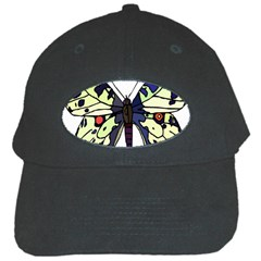 A Colorful Butterfly Image Black Cap