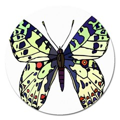 A Colorful Butterfly Image Magnet 5  (Round)