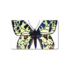 A Colorful Butterfly Image Magnet (name Card)