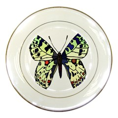 A Colorful Butterfly Image Porcelain Plates