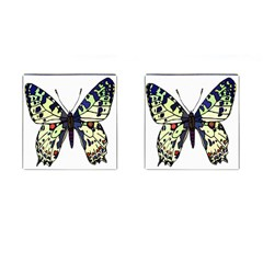 A Colorful Butterfly Image Cufflinks (square)