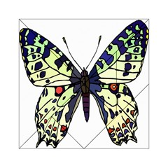A Colorful Butterfly Image Acrylic Tangram Puzzle (6  X 6 )