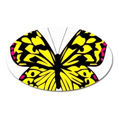 Yellow A Colorful Butterfly Image Oval Magnet