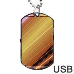 Diagonal Color Fractal Stripes In 3d Glass Frame Dog Tag USB Flash (One Side)