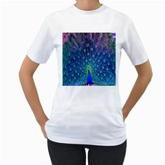 Amazing Peacock Women s T-Shirt (White) (Two Sided)