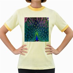Amazing Peacock Women s Fitted Ringer T-Shirts