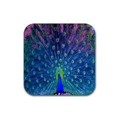 Amazing Peacock Rubber Coaster (square)