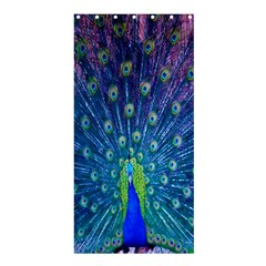 Amazing Peacock Shower Curtain 36  X 72  (stall)