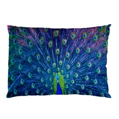 Amazing Peacock Pillow Case (Two Sides)