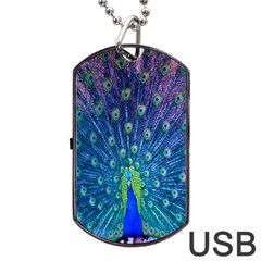 Amazing Peacock Dog Tag Usb Flash (two Sides)