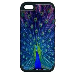 Amazing Peacock Apple iPhone 5 Hardshell Case (PC+Silicone)