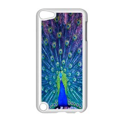 Amazing Peacock Apple iPod Touch 5 Case (White)