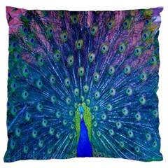 Amazing Peacock Large Flano Cushion Case (Two Sides)