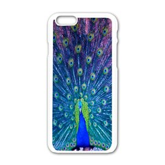 Amazing Peacock Apple Iphone 6/6s White Enamel Case