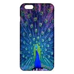 Amazing Peacock iPhone 6 Plus/6S Plus TPU Case