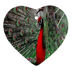 Red Peacock Ornament (heart)