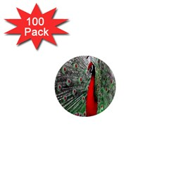 Red Peacock 1  Mini Magnets (100 pack)