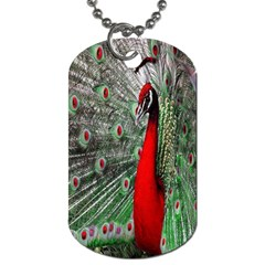 Red Peacock Dog Tag (one Side)