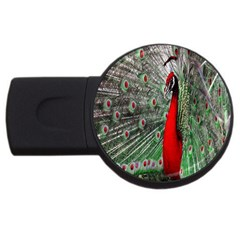 Red Peacock Usb Flash Drive Round (2 Gb)