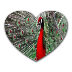 Red Peacock Heart Mousepads